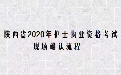 陕西省2020年护士执业资格考试现场确认流程