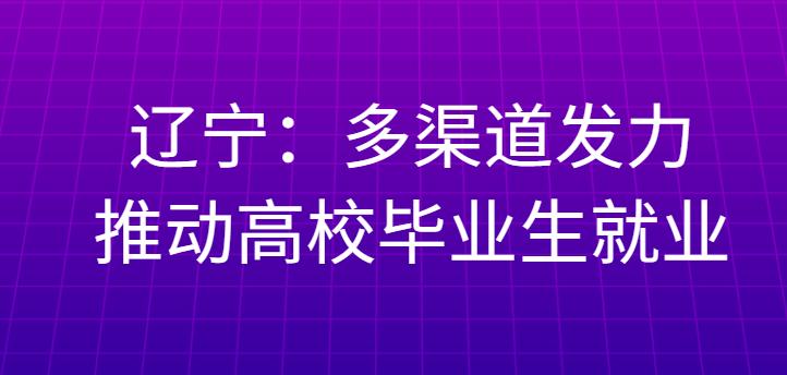 辽宁:多渠道发力推动高校毕业生就业