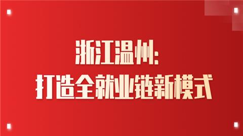 浙江温州:打造全就业链新模式