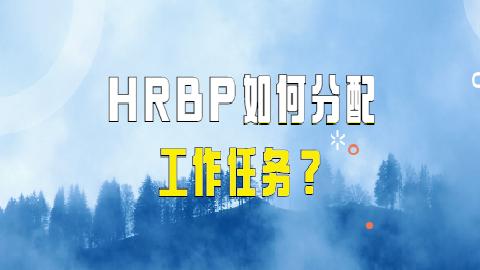 HRBP如何分配工作任务?