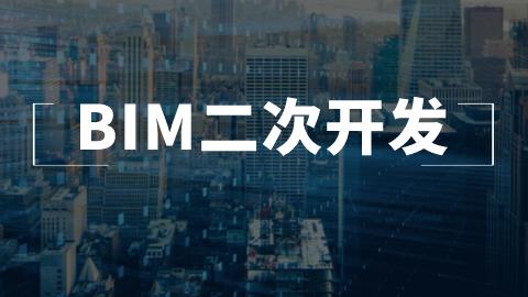 BIM二次开发