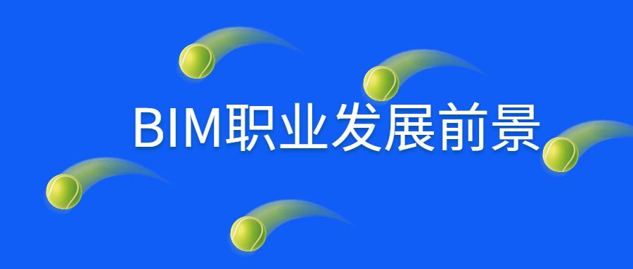BIM职业发展前景