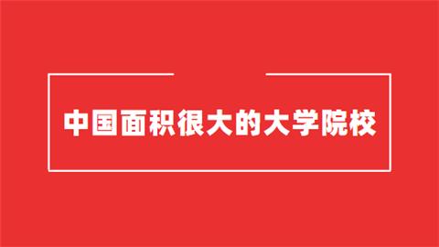 中国面积很大的大学院校推荐